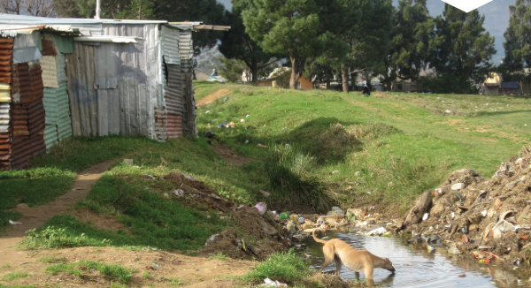 Lack of water and sanitation facilities impact on downstream water quality in the Berg River.