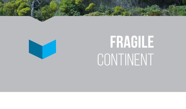 theme-fragile